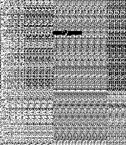 Синан дуьне