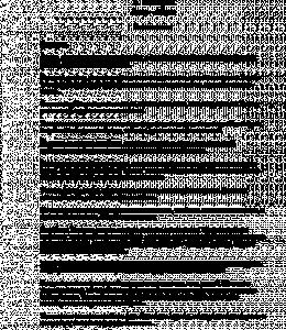 Асир-Абрек