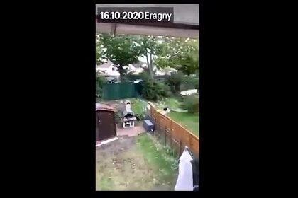 Момент убийства учителя попал на видео