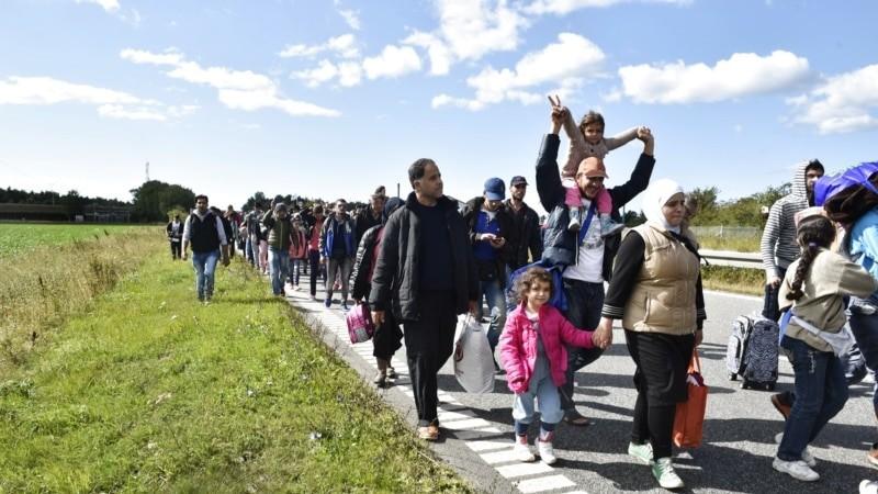 В Дании приняли закон об отправке беженцев в третьи страны