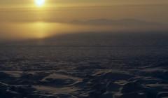 Ученые заявили ориске пробуждения древних вирусов из-затаяния мерзлоты