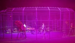 В Грозном дети погибших сотрудников Росгвардии посетили цирковое представление