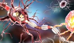 Коронавирус оказался губителен для мозга миллионов людей