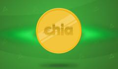 Разработчик добыл участок Chia за 42 минуты