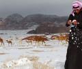 В Саудовскую Аравию вернулась зима: на северо-западе страны выпал снег