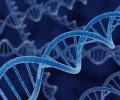 10 невероятных способностей, полученных благодаря редким генетическим мутациям