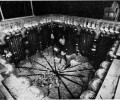 """Ученый устроил рай для мышей, который обернулся настоящим адом. История уникального эксперимента """"Вселенная-25"""""""