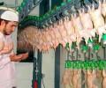 Халяльные курицы разрушают французские ценности