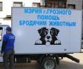 В Грозном создана служба по отлову бездомных животных